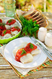 Cabbage Rolls with Tomato Sauce and Dill Royalty Free Stock Images
