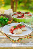 Cabbage Rolls with Tomato Sauce and Dill Stock Photography