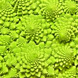 Cabbage romanesco background Royalty Free Stock Image