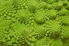 Cabbage romanesco background Royalty Free Stock Photo