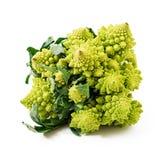Cabbage romanesco Stock Photo