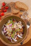 Cabbage salad beef mushrooms russian vodka bread royalty free stock photo