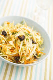 Cabbage salad Royalty Free Stock Image