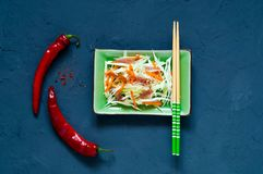 Cabbage Salad Coleslaw and beef in green ceramic dish with chopsticks on blue background of concrete, organic food concept stock photography
