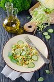 Cabbage salad with cucumber and carrots Royalty Free Stock Image