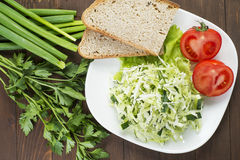 Cabbage salad with cucumber, tomatoes and herbs. Laid out on a white plate with bread Royalty Free Stock Images