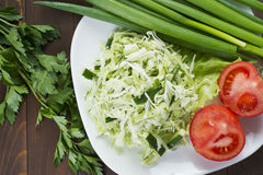 Cabbage salad with cucumber, tomatoes and herbs. Laid out on a white plate with green onions Royalty Free Stock Photography