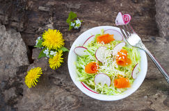 Cabbage salad,tasty and healthy dish of vegetables. Cabbage salad,tasty and healthy dish of vegetables,cucumbers and radishes,on background wooden structure Royalty Free Stock Photos