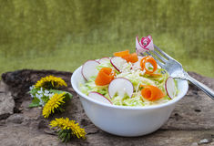 Cabbage salad,tasty and healthy dish of vegetables. Cabbage salad,tasty and healthy dish of vegetables,cucumbers and radishes,on background wooden structure Royalty Free Stock Photo