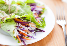 Cabbage salad wrapped in lettuce Stock Photos