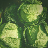 Cabbage for Sale. In outdoor market Stock Photography