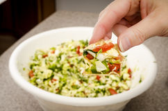 Cabbage salsa dip. Fresh cabbage salsa on a corn chip being held above a bowl of salsa Royalty Free Stock Photo