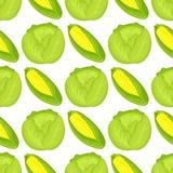 Cabbage seamless pattern background for food design harvesting garden summer vitamin wallpaper vector illustration. Healthy fresh natural vegetable Royalty Free Stock Photos