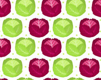 Cabbage seamless pattern. Red  endless background, texture. Vegetable . Royalty Free Stock Photography