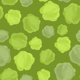 Cabbage seamless pattern. Vegetable  background ripe cabba Royalty Free Stock Images