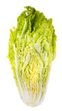 Cabbage slice Royalty Free Stock Photo