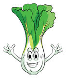 Cabbage Smile Character Royalty Free Stock Image