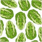 Cabbage of the sort peking decorative pattern. Vector illustration of the decorative pattern cabbage chinese vector illustration