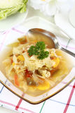 Cabbage soup Royalty Free Stock Photos