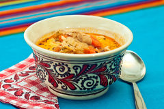 Cabbage soup Stock Images
