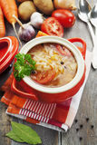 Cabbage soup with meat Royalty Free Stock Photography