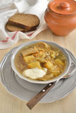 Cabbage soup with mushrooms Stock Image