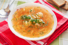 Cabbage soup. Russian traditional dish Royalty Free Stock Photography