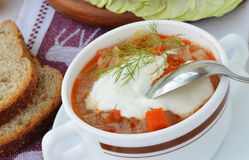 Cabbage soup with sour cream. Cabbage soup with sour cream in a soup bowl with handles - selective focus stock photos