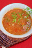 Cabbage soup. Tasty dish on red background royalty free stock photo