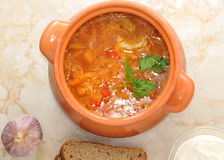 Cabbage soup is a traditional dish of Russian national cuisine Stock Images
