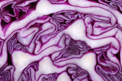 Cabbage spiral Stock Photos