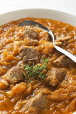 Cabbage stew- goulash Royalty Free Stock Photos