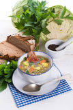 Cabbage stew with meat Royalty Free Stock Photo