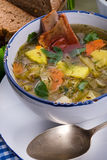 Cabbage stew with meat Royalty Free Stock Image