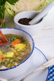 Cabbage stew with meat Royalty Free Stock Photos