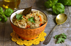 Cabbage stewed with mushrooms. Stock Photos