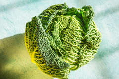 Cabbage on the table. Cabbage entire, leaves, shadows on the table Royalty Free Stock Image