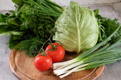Cabbage tomato spinach onions sorrel parsley Royalty Free Stock Images