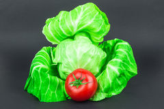 Cabbage and tomato stock images