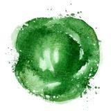 Cabbage vector logo design template. vegetables or Stock Photos