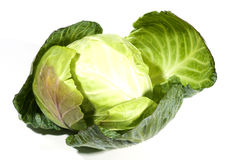 Cabbage vegetable one whole Royalty Free Stock Images