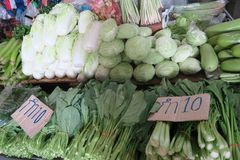 Cabbage and vegetables at the market, Thailand Royalty Free Stock Photography