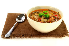 Cabbage, vegetables and mushrooms vegetarian soup Stock Image