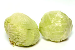 Cabbage-vegeterian food Stock Image