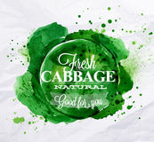 Cabbage watercolor poster Royalty Free Stock Photos