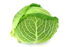 Cabbage on white Stock Photos