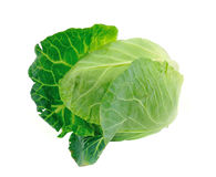 Cabbage on white background Royalty Free Stock Photo