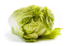 Cabbage on a white background Stock Photos