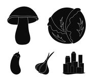 Cabbage white, mushroom forest, garlic useful, eggplant. Vegetables set collection icons in black style vector symbol. Stock illustration Royalty Free Stock Photo