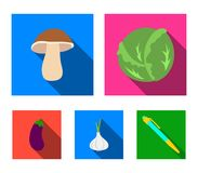 Cabbage white, mushroom forest, garlic useful, eggplant. Vegetables set collection icons in flat style vector symbol. Stock illustration Royalty Free Stock Photography